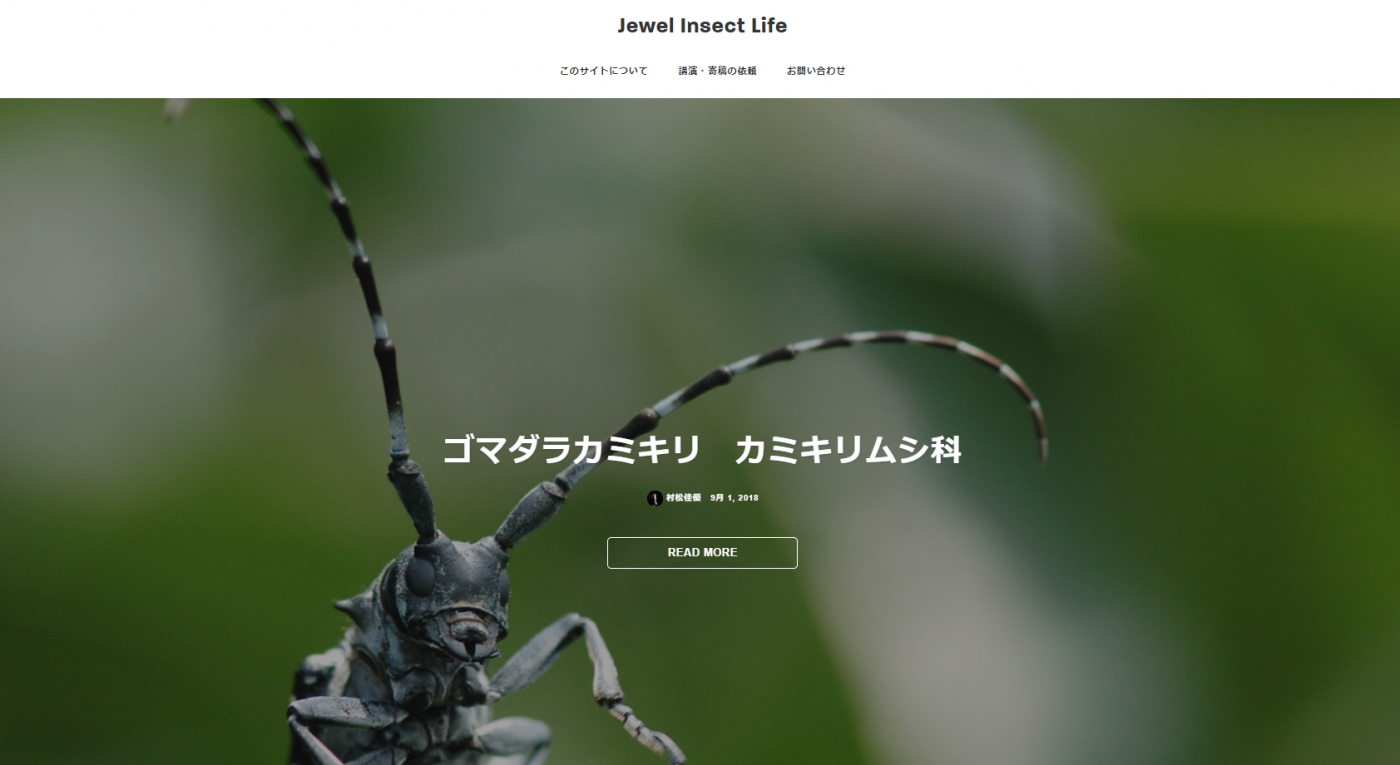 Jewel Insect Life – 宝石のように輝く小さな命〜昆虫写真図鑑〜
