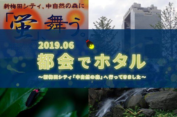 ホタル 新梅田シティ「中自然の森」