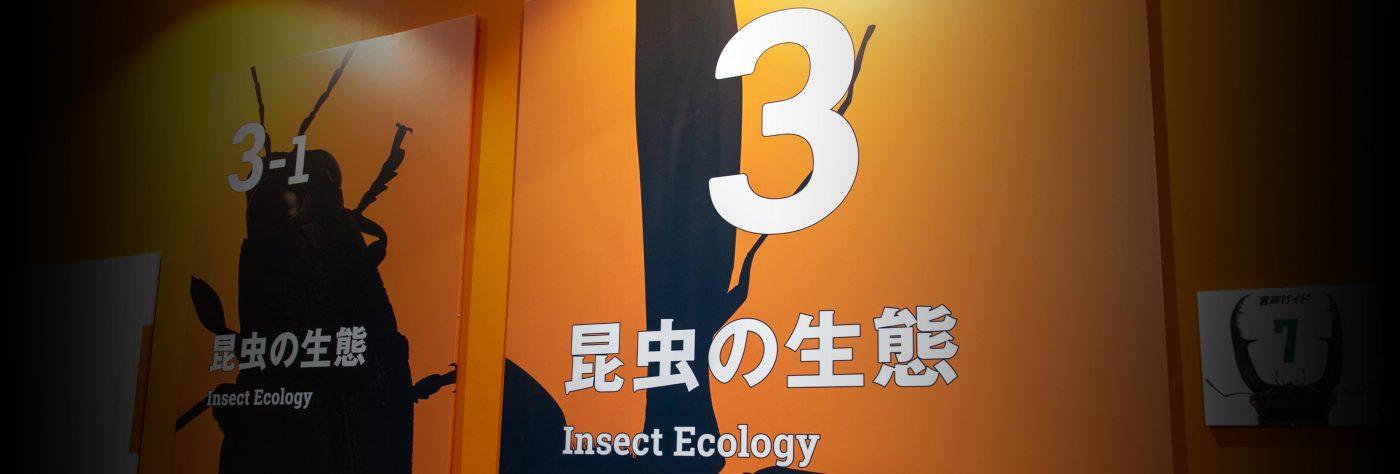 特別展昆虫 初日 昆虫の生態