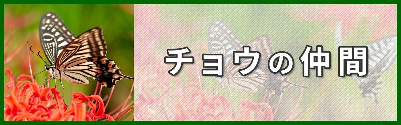 チョウ類バナー