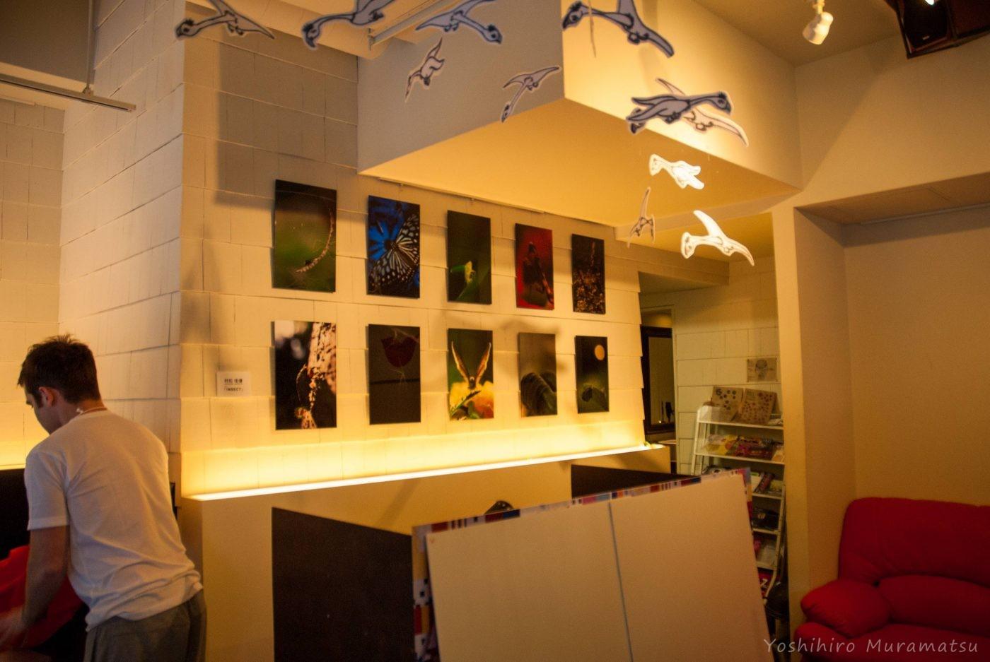 アブサン展示の写真