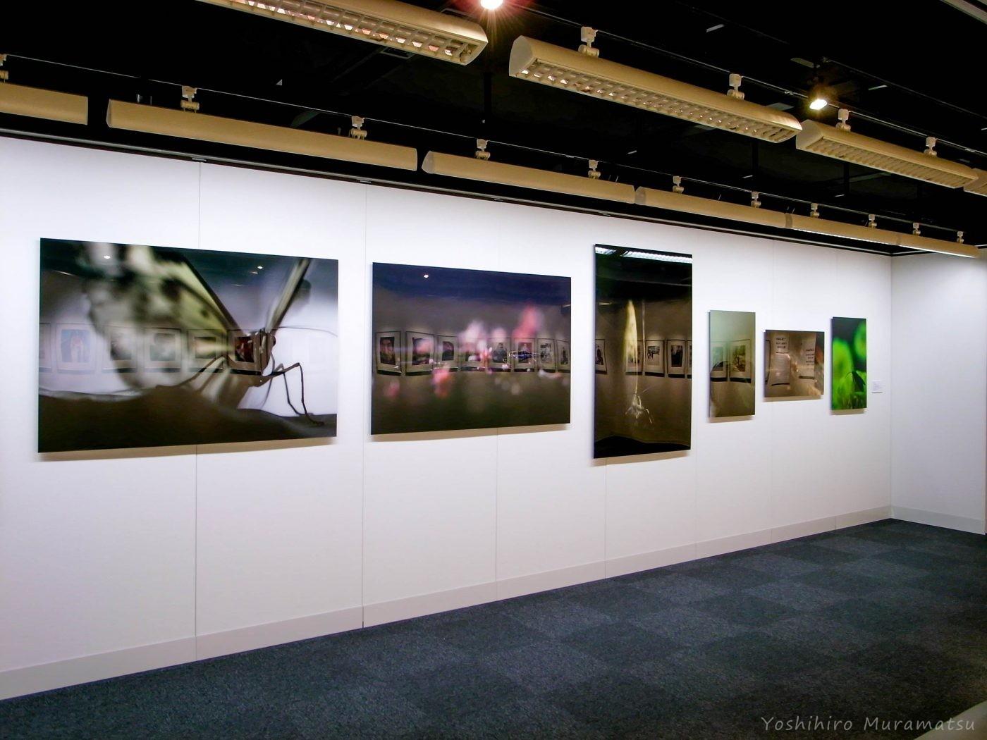 ニコンサロン大阪の写真