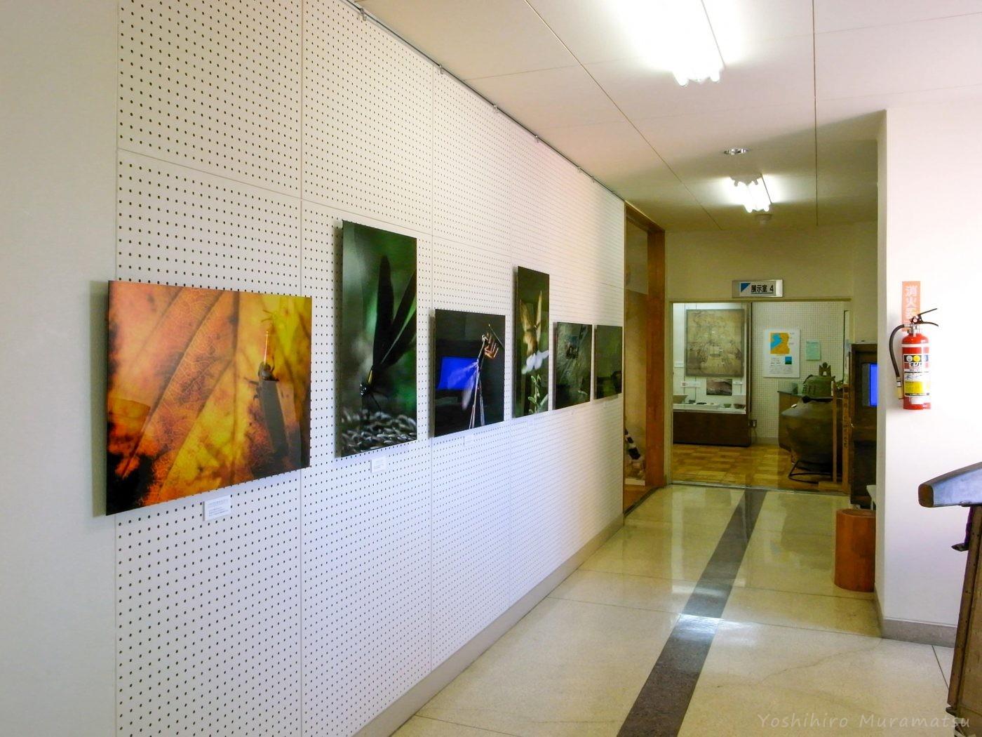 伊吹山文化資料館の写真