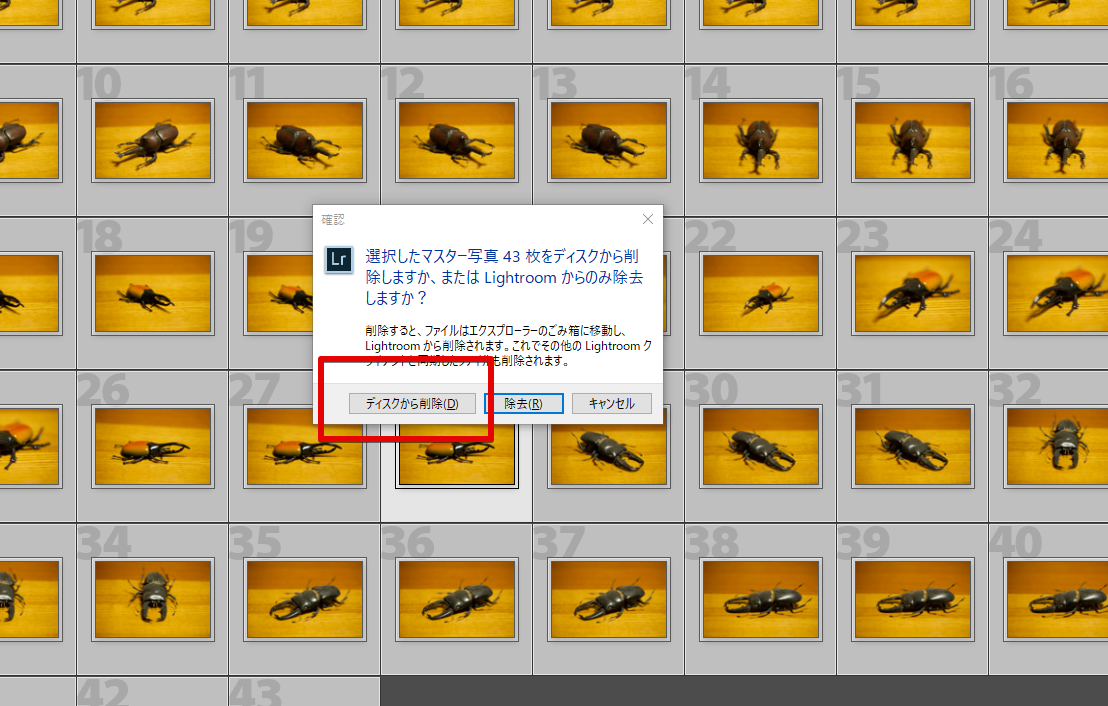 EaseUS Data Recovery Wizard二回目