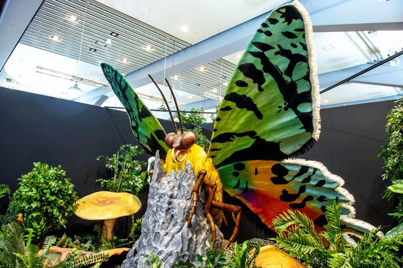 虫 模型 大きい あつ森
