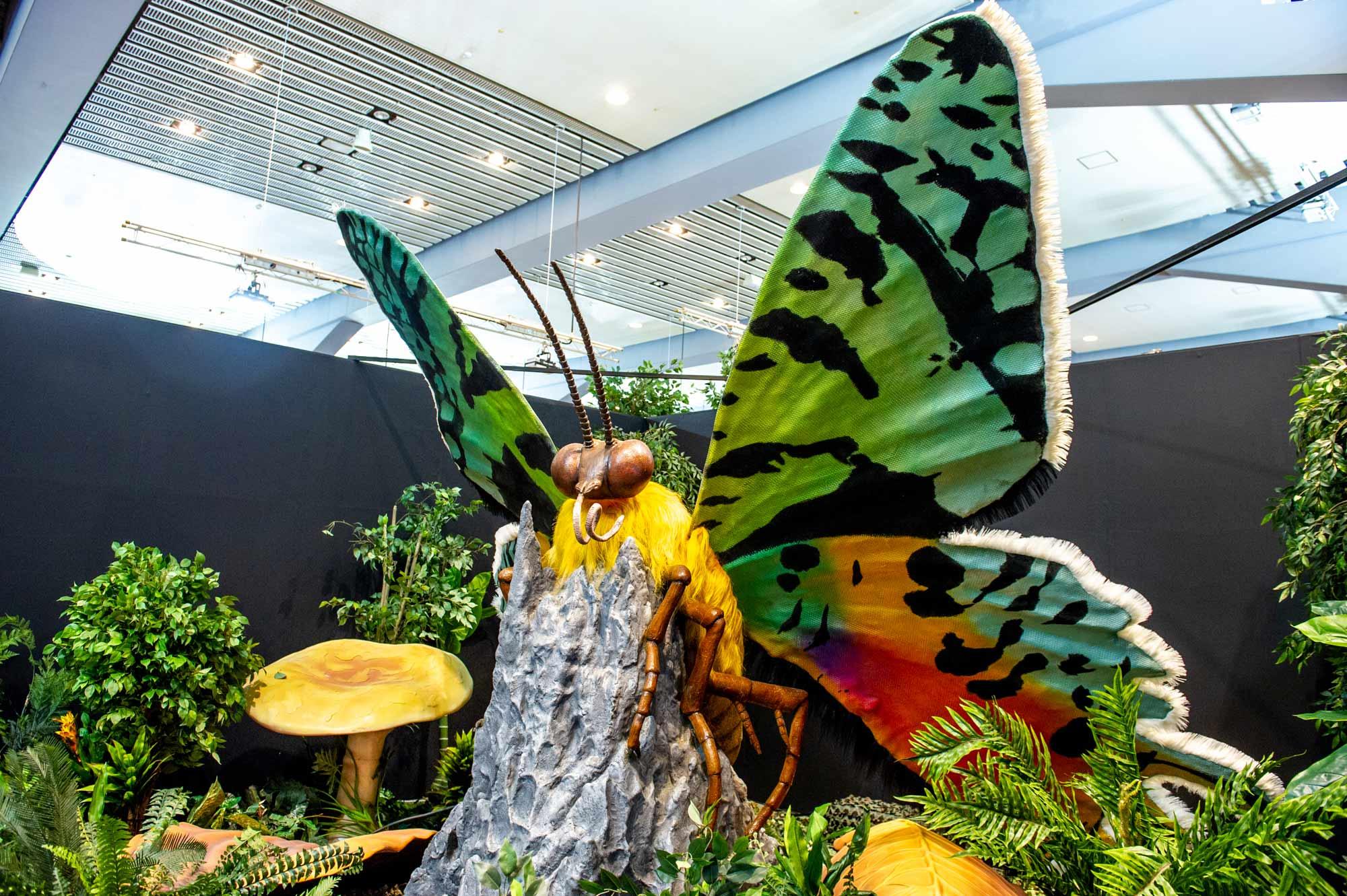 ニシキオオツバメガの模型画像