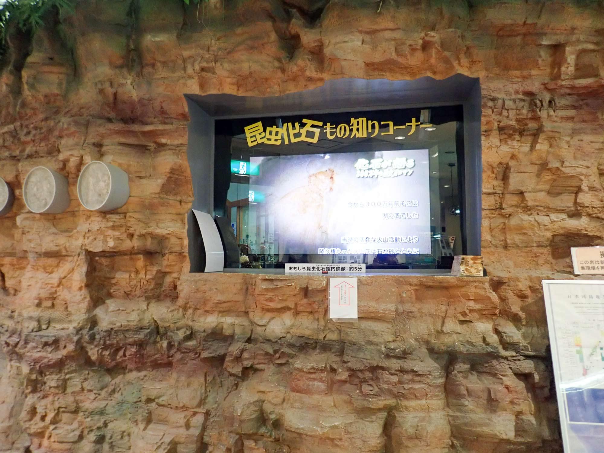 おもしろ昆虫化石館の写真